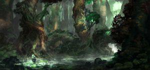 Forest_Establishing_Shot_1
